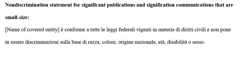 sample ce statement italian