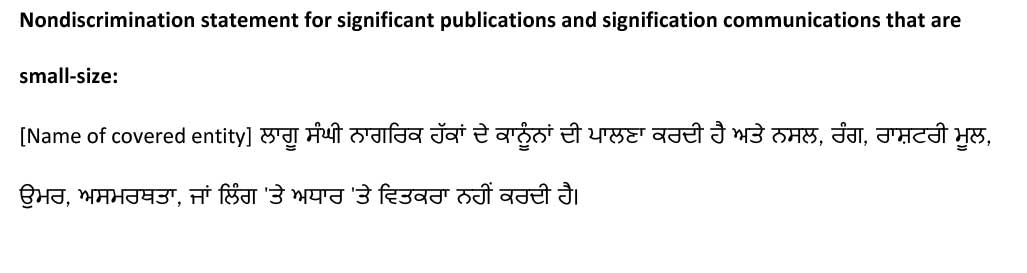 sample ce statement punjabi